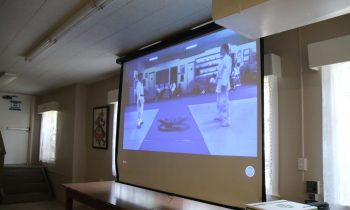 Zooming In: The first hybrid in-person and virtual kata contest  – by Professor Nerissa Freeman